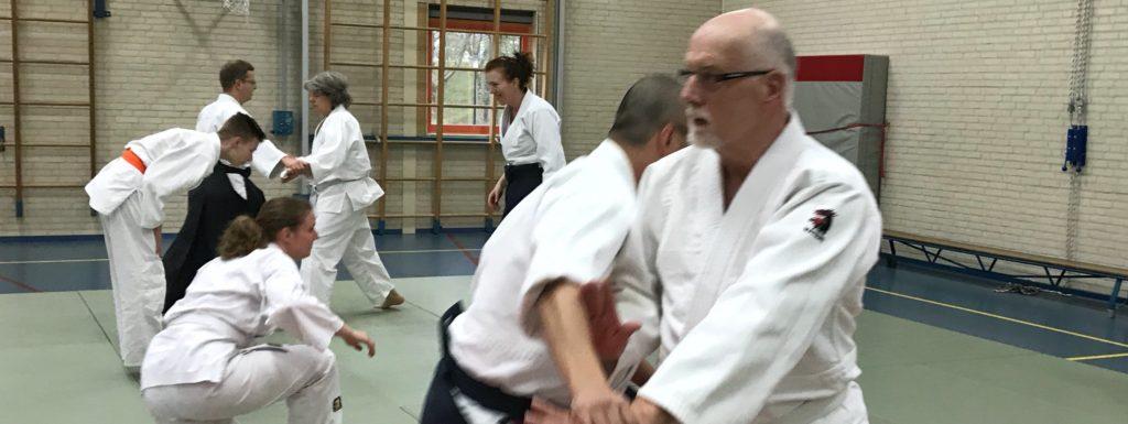 aikido ook voor 65 plus